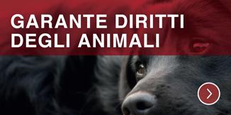 Garante degli animali